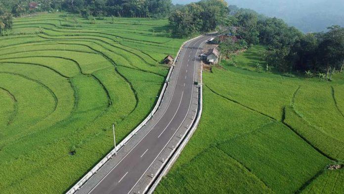 Sawah di Gunungkidul Daerah Istimewa Yogyakarta. (Foto dari Kabarhandayani)