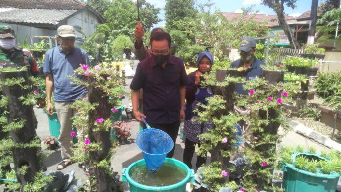 Wakil Walikota Yogyakarta, HeroePoerwadi melakukan panen raya lele budidaya dalam ember, Sabtu (12/09/2020) di Jalan Nogosari Lor Kadipaten